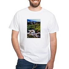 Bristlecone Pines- Shirt