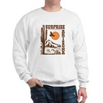 Surprise Arizona Sweatshirt