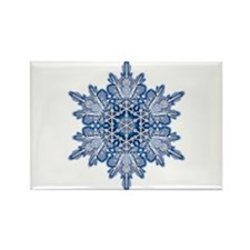 Snowflake 11 Rectangle Magnet (100 pack)