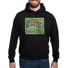 Devoted to Donkeys - Hoodie