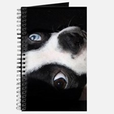 BLUE EYED BOSTON TERRIER Journal