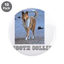 "Cute Collie 3.5"" Button (10 pack)"
