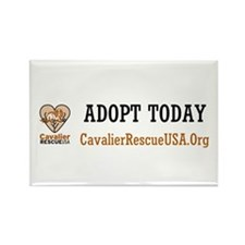 Adopt Rectangle Magnet (10 pack)