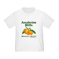 Anaheim Hills, Orange County T
