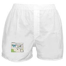 Punct Boxer Shorts
