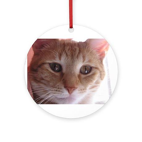 Mr. Munchkin Face Ornament (Round)