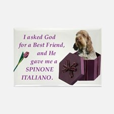 Funny Spinone italiano Rectangle Magnet