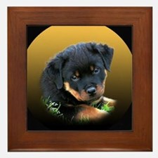 Rottweiler Puppy on more Gift Framed Tile