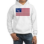Dino USA Hooded Sweatshirt