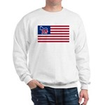 Democrat Sweatshirt
