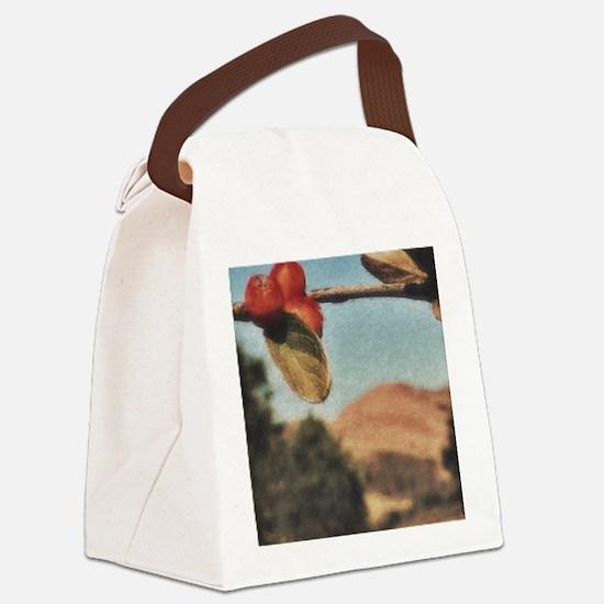 Cute Berkeley california Canvas Lunch Bag