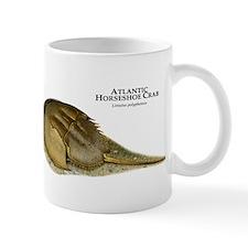 Atlantic Horseshoe Crab Mug