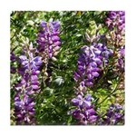 California Lupine Tile Coaster