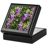 California Lupine Keepsake Box