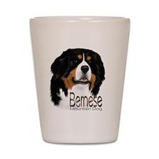 Cute Bernese puppy Shot Glass