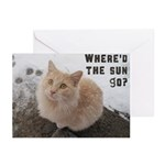 Seasonal Greeting Cards Greeting Cards (Pk of 20)