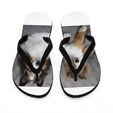 Sheltie Flip Flops