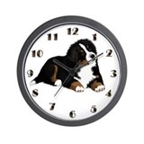 Bernese mountain dog Wall Clocks