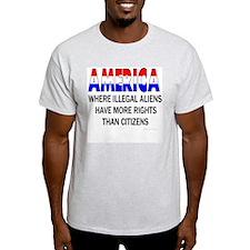 More Rights Ash Grey T-Shirt