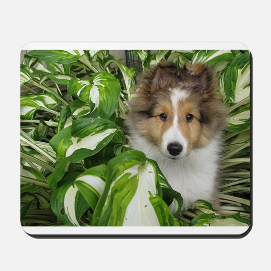 Puppy in the Leaves Mousepad