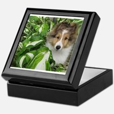 Puppy in the Leaves Keepsake Box