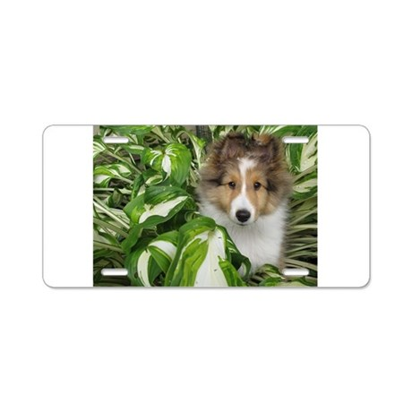 Puppy in the Leaves Aluminum License Plate