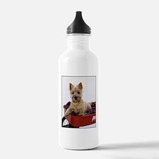 Baby Cairn Terrier Water Bottle