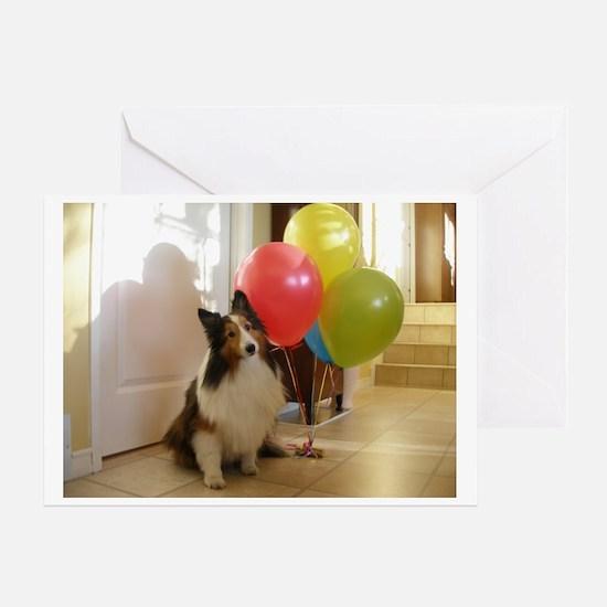 Sheltie Birthday Greeting Card