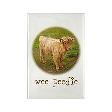 Wee Peedie (Highland Calf) Rectangle Magnet