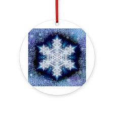 January Snowflake Ornament (Round)
