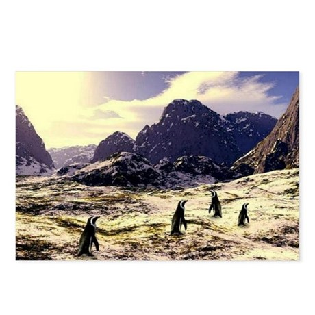 Jmcks Penguin Postcards (Package of 8)