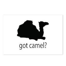 Got camel? Postcards (Package of 8)