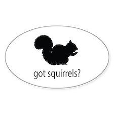 Got squirrels? Decal