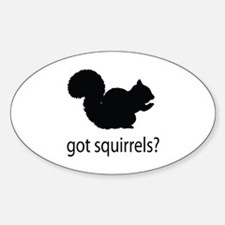 Got squirrels? Decal