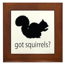 Got squirrels? Framed Tile