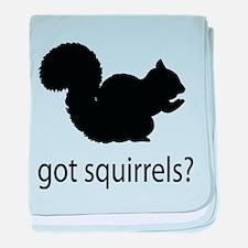 Got squirrels? baby blanket