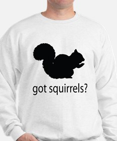 Got squirrels? Jumper