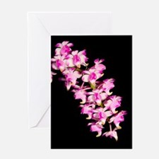 Aer. Punchinello Greeting Card