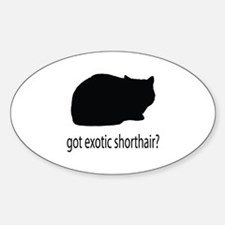 Got exotic shorthair? Decal