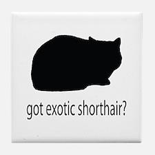 Got exotic shorthair? Tile Coaster