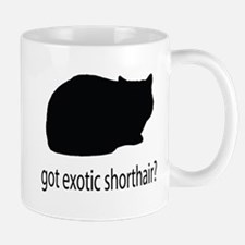 Got exotic shorthair? Mug