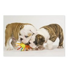 BULLDOG PUPPIES PLAYING Postcards (Package of 8)