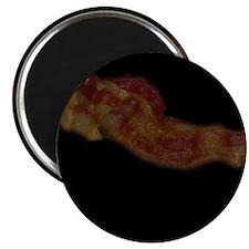 Bacon, Glamour Shot Magnet