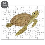 Turtle Puzzles