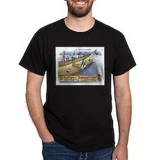 Pi_4 Pi-Rates (10x10 Color) T-Shirt