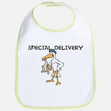 Special Delivery Baby Bib