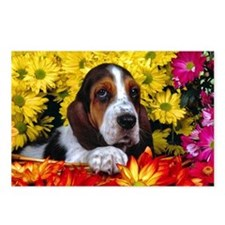 BASSET HOUND BOQUET Postcards (Package of 8)
