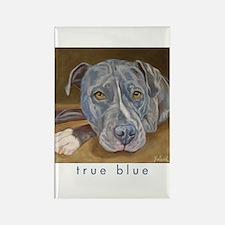 True Blue Rectangle Magnet