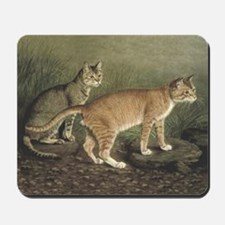 Abyssinian and Indian Cats Mousepad