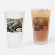 Unique Slug bug Drinking Glass